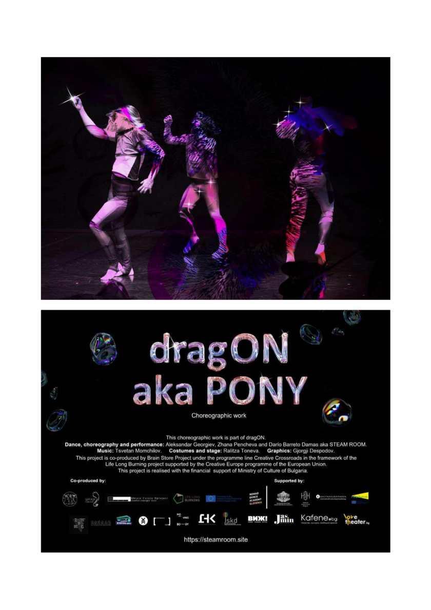 dragON aka PONY dossier-4