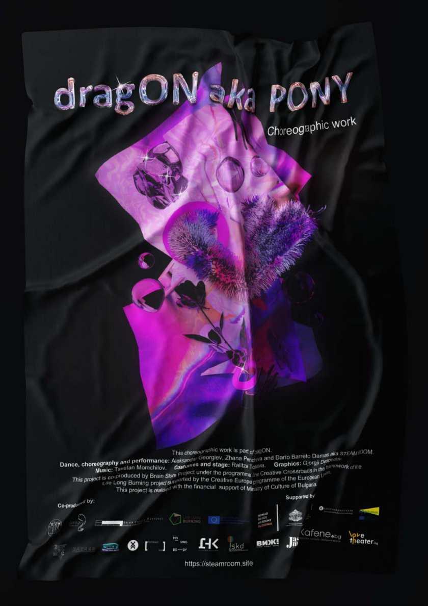 dragON aka PONY dossier-5